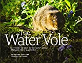 The Water Vole: The Story of One of Britain's Most Endangered Mammals