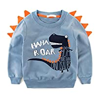 Rebavl Boys Sweater Sweatshirt Top Long Sleeve Dinosaur Warm Pullover for Kids 2-7 Years