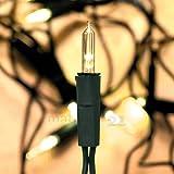 matches21 LED Mini Lichterkette/Minilichterkette extra warmweiß 10-flammig 3,5 m klar/grün 230V extra warmes Licht