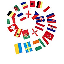 ASVP Shop® UEFA Euro 2016 Nations Flag Bunting - 24 Flags - 16m / 52ft by ASVP Shop