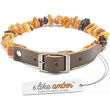Ámbar collar para perros de pulgas y moscas–tamaño 20cm-75cm–Top Calidad en Amazon–fabricado en 100% auténtica Raw ámbar báltico–pulgas y garrapatas Protección–100% natural y libre de productos químicos