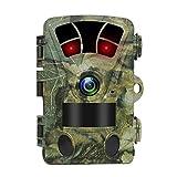 Best Caméras de surveillance inconnue - Trail Camera 16MP HD 1080p Wildlife LED IR Review