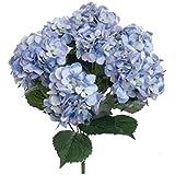FRE 7cabeza artificial de seda flores de Hortensia boda ramo de fiesta Decor cielo Azul