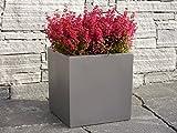 Pflanzkübel aus Fiberglas quadratisch, Blumenkübel, Pflanzgefäß, Blumengefäß, Pflanztopf, Blumentopf (30x30x30 cm, Grau-Metallic)