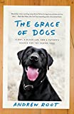 The Grace of Dogs: A Boy, a Black Lab, and a Father's Search for the Canine Soul