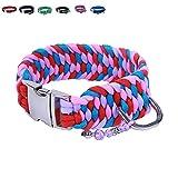 BelloBand Hundeleine Set aus Paracord / Führleine mit Hundehalsband für kleine Hunde / Farbe: Pink / 30cm ø