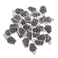 ‏‪ULTNICE 30pcs Antique Silver Skull Head Charms Jewelry Making Charms Pendants for DIY Jewelry Making‬‏