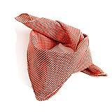 ALMBOCK Nickituch Trachten Halstuch Herren rot weiß kariert | rotes Trachten Tuch | Halstuch Trachtenschal aus Baumwolle