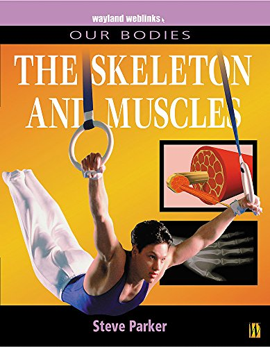 Our Bodies: Muscles and Skeleton