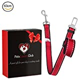 PetsLovers Durable Dog Seat Belt