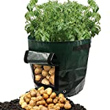 Dreamerd 2-Pack 7 Gallon Grow Bags /Aeration Fabric Pots/Potato Planter Bags with Flap for Grow Vegetables: Potato, Carrot & Onion