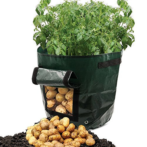Dreamerd Pflanztaschen, 2er-Pack, ca. 32 Liter, Pflanztaschen mit Belüftung, Stofftaschen, Kartoffelpflanztaschen mit Lasche, für Gemüse, Kartoffeln, Karotten und Zwiebeln (2 Pack)