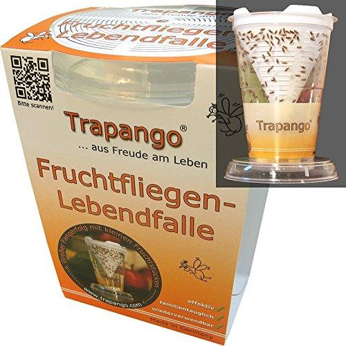 Fruchtfliegen-Lebendfalle Trapango® - Tot Drei Teile