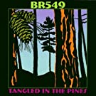 Tangled in the Pines