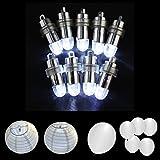 Mini batteriebetriebener LED Ballon beleuchtet nicht blinkende Partei beleuchtet für Papierlaterne-Ballon-LED Licht, Papierlaterne-Ballon-Dekoration LED-Licht, Hochzeits-Party-Dekorations-Licht (Pack of 12) (Weiß)