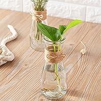 Skyeye Gran Carta de Vidrio florero Transparente Sala de Estar arreglo de Flores Decorativo florero seco