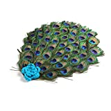 Zhhlaixing Newborn Baby Toddler Artificial Peacock Feather Costume Set Photography Photo Props Outfit with Head Band