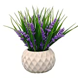 VGIA Modern Artificial Potted Plant for Home Decor Lavender Flowers and Grass Arrangements Tabletop Decoration (Kitchen & Home)