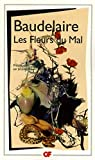 LES FLEURS DU MAL (illustrated) - Format Kindle - 1,90 €