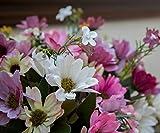 FlowerFest Benevolence Flower Arrangement