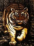 Kuscheldecke Tagesdecke Decke Motiv Tiger 160x200cm