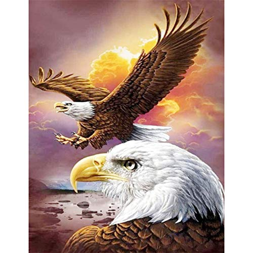 Diamond Painting Set, Sonnenuntergang Boot bunter Himmel 5D Diamant Painting Set Full Stickerei Groß Bilder DIY Diamonds Malerei 30x40cm ( Adler Fliegen, 30 x 40 cm) (Adler Bilder)