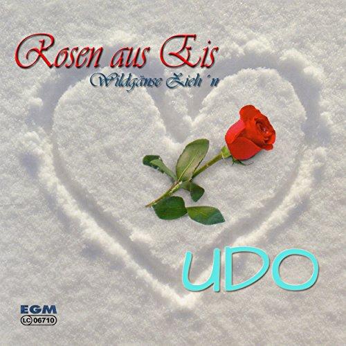 Rosen aus Eis - Rose Eis