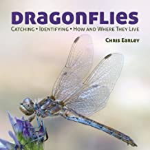 Dragonflies: Hunting - Identifying - How and Where They Live