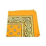 Unbekannt Bandana Kopftuch Halstuch Nickituch Biker Tuch Motorad Tuch verschied. Farben Paisley Muster (Sonnen Gelb)