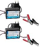 2 x Batterietrainer 12V Batterie Erhaltungsladegerät 10-250Ah Ladegerät