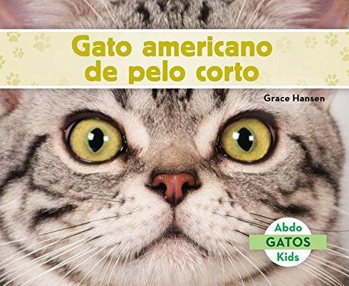 Gato Americano de Pelo Corto (American Shorthair Cats) (Spanish Version) (Gatos/ Cats) por Grace Hansen