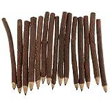 Homyl 15 Stück Zweig und Zweig Graphit Bleistifte Skizzierstifte Set Graphit Kohlestifte Sticks für Skizzieren und Zeichnen