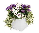 Closer to Nature (I-Fulfilment) Pot Plante Artificielle Parure de lit et Affichage Gamme P White & Purple