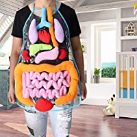 Anatomy Apron Human Body Organs Awareness Educational Insights Toys for Children Preschool Science Homeschool Teaching Aids