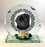 personalisiert Hund Gedenktafel, Glas Plaque Wir Personalisieren mit Ihrem eigenen Foto