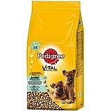 Pedigree Junior Maxi Hundefutter Huhn und Reis, 1 er Pack (1 x 15 kg)
