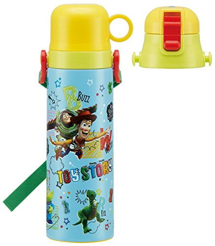 Skaters for Children 2WAY Bouteille d'eau en Acier Inoxydable 570 ML Toy Story Disney SKDC6