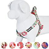 Blueberry Pet Hundegeschirr, blumig rosa und nautische Flaggen, verstellbar, passendes Halsband und Leine separat erhältlich