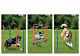 Agility Trainingsset