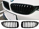 Deltalip lucido nero anteriore Rene griglia per BMW F33F32F3613–16