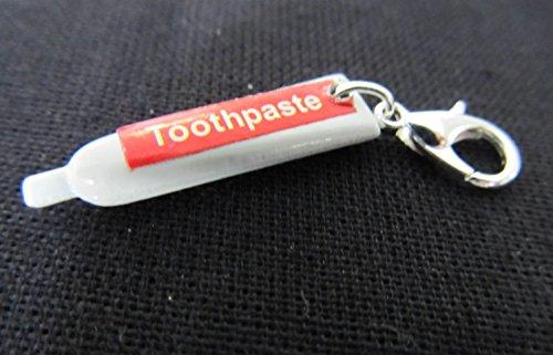Zahnpasta Zahncreme Charm Zipper Pull Anhänger Bettelanhänger Miniblings