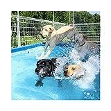 Pawhut Hundepool Doggy Pool Hunde Pool Planschbecken Swimmingpool Badewanne Pool Umweltfreundliche...