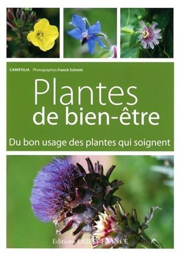 Plantes de bien-être : Du bon usage des pantes qui soignent par Camifolia