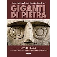 Giganti di pietra. Monte Prama. L'Heroon che cambia la storia della Sardegna e del Mediterraneo. Ediz. illustrata
