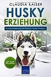 Husky Erziehung: Hundeerziehung für Deinen Husky Welpen -