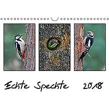 Echte Spechte (Wandkalender 2018 DIN A4 quer): Faszinierende Portraits europäischer Spechte (Monatskalender, 14 Seiten ) (CALVENDO Tiere) [Kalender] [Apr 01, 2017] Wolf, Gerald