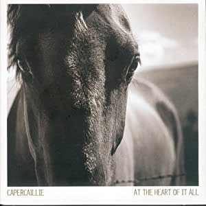 At the Heart of It All - Capercaillie -VERTCD100