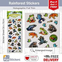 Fun Stickers Rainforest Frogs 1022