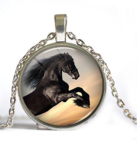 collar-caballo-modelo-3