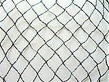 AGROFLOR Vogelschutznetz, schwarz-grün, Maschenweite 25mm, vielseitig Einsetzbar, mehrjährig verwendbar, Verschiedene Größen! (4 x 5 m)